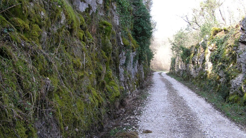 Parenzana  trail detail